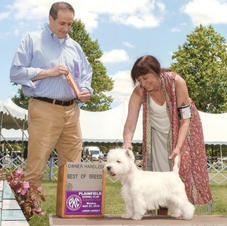 Hobbes wins Best of Breed