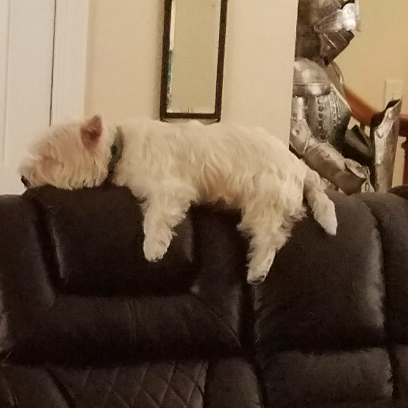 Hercules on his throne