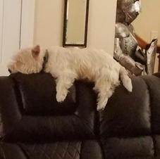 Hercules on his throne