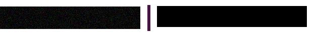 Logo Numilog