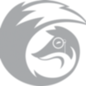 RF logo.png