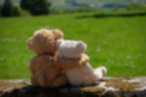 DSCF1413.Teddies.Wall.LS.web.jpg