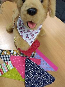 Dog wearing bandana.jpg