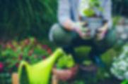 Image if a gardener.jpg