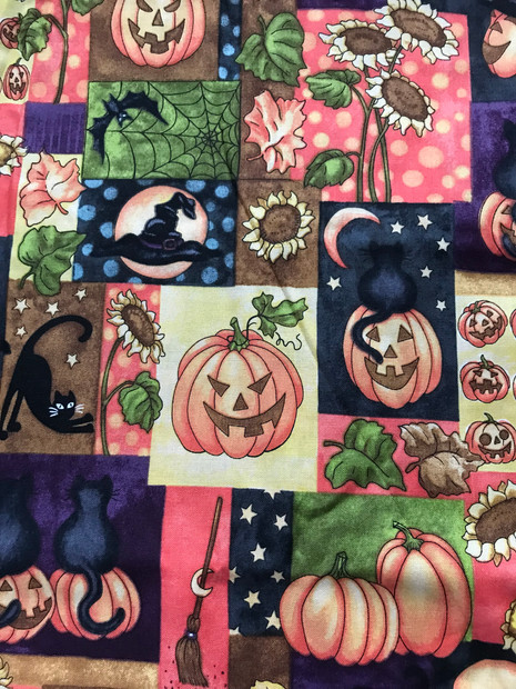 Pumpkins and Cats
