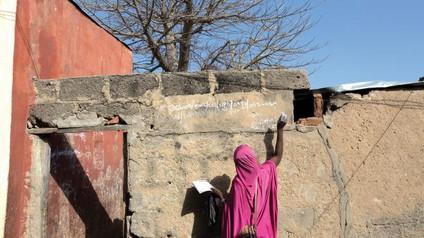 Nigeria reaches crucial polio milestone