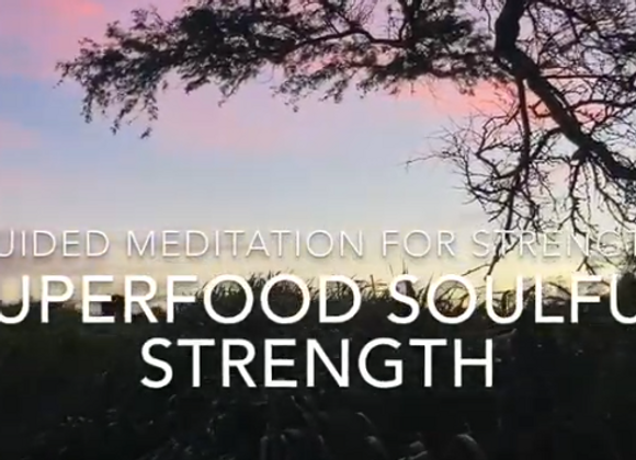 Destiny's Superfood Soulful Strength Fuel Custom Panel for Your Quantum iNfinity
