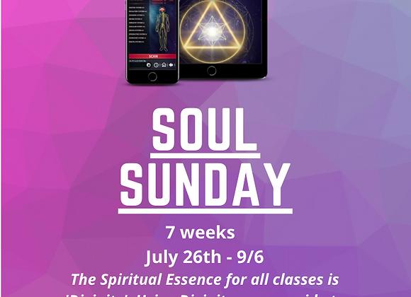 'Spiritual Intelligence & Resonance' Class
