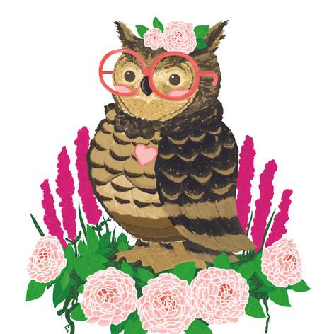 Owl Final