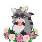 Raccoon Final