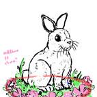 BunnyWIP002
