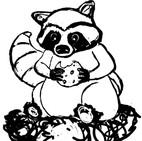 RaccoonWIP001