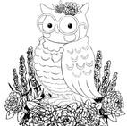 OwlWIP005