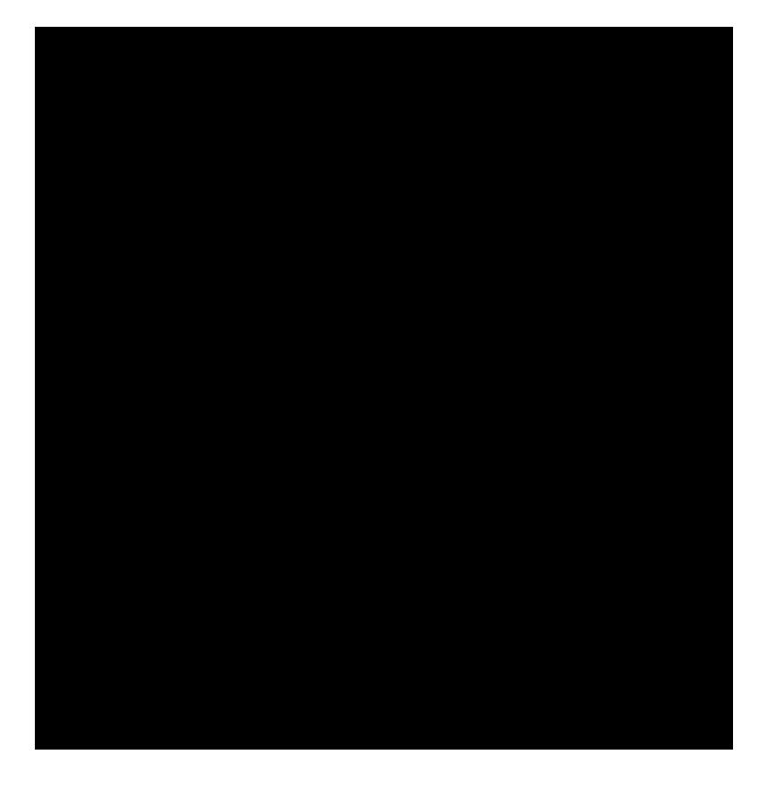 Sankofa Icon