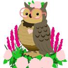 OwlWIP006