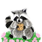 RaccoonWIP006