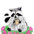 RaccoonWIP004