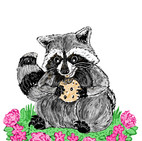 RaccoonWIP003