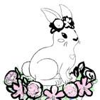 BunnyWIP003