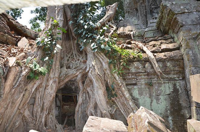 Angkor (211).JPG