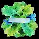 Floral Badge 3