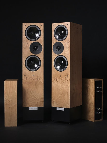 Living Voice Auditorium OBX RW3 Speakers