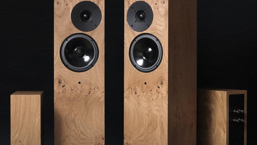 Living Voice Auditorium OBX RW3 Speakers