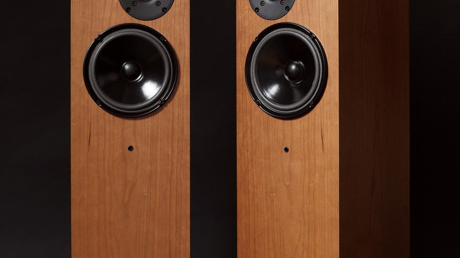 Living Voice Auditorium IBX RW3 Speakers