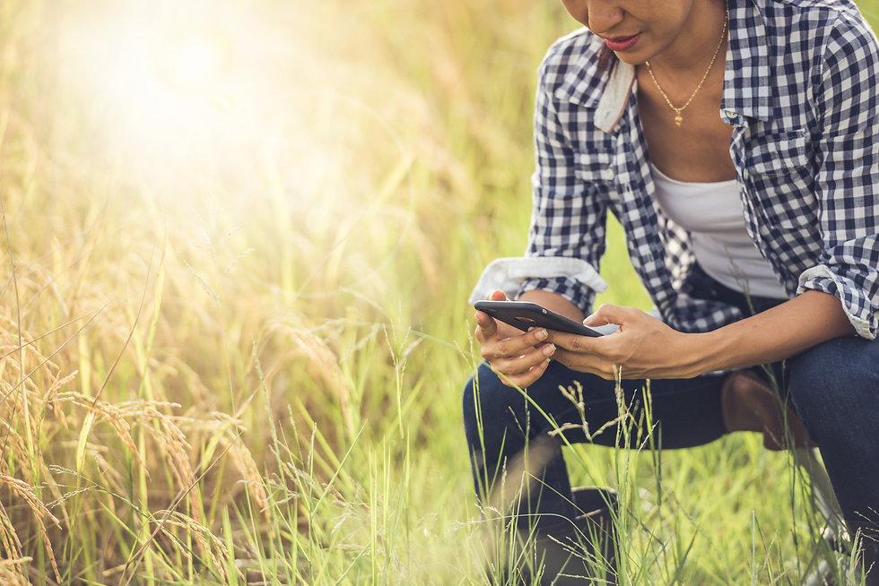 Digitalize suas operações de financiamento agrícola com a Bart Digital. Pioneira na formalização de CPR digital.