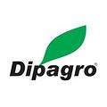 logo dipagro.png