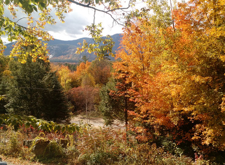 Autumn in NH