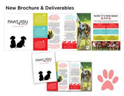 Redesigned Brochure