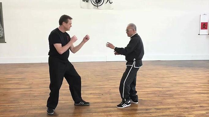 Grand Master Wai Lun Choi and John Feely - Luk Hop Bat Fat 12 Animals, Lun Application