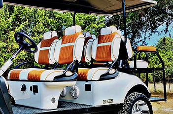 Spalla Cart Seats.jpg