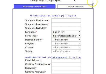 How to fill out online application