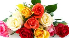Les roses après 50 ans