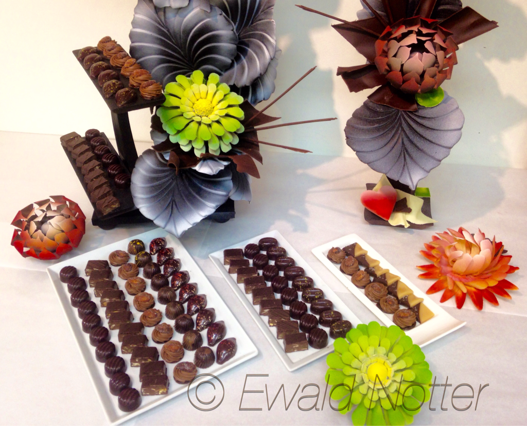 Chocolate Praline class demo AUI 22June2015