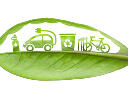 Sustainability is a Disruptive Force