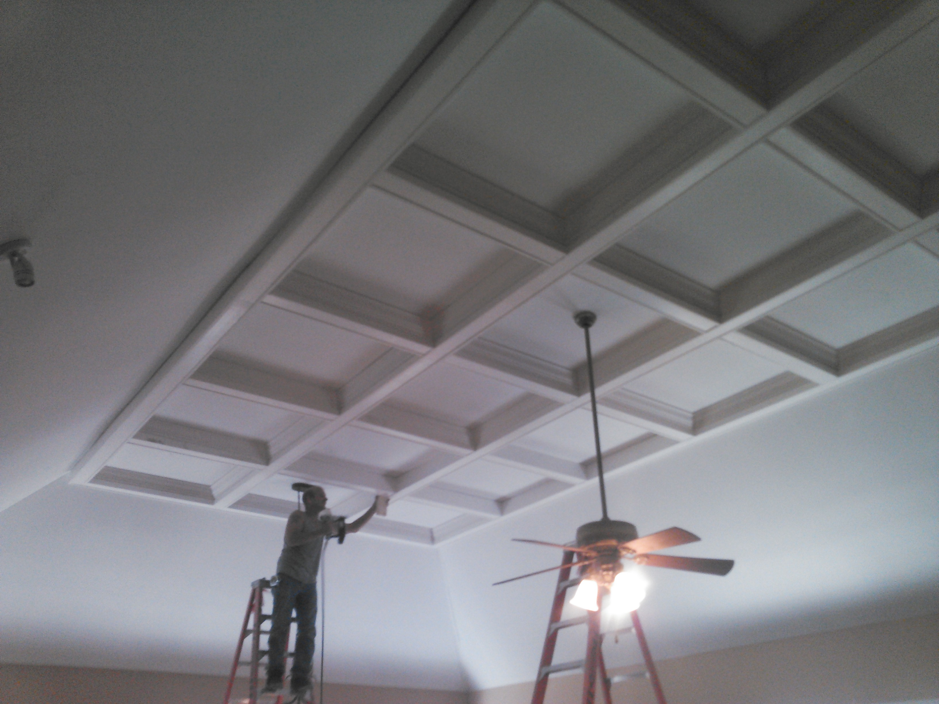 Williamson Coffered Ceiling 3