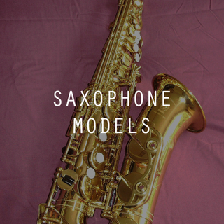 Saxophone Models