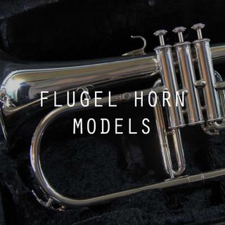 Flugel Horn Models