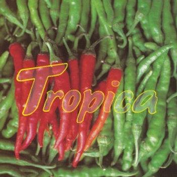 Hot Pepper Cayenne