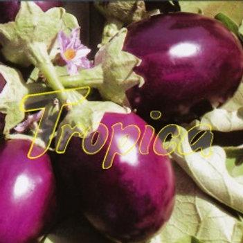 Eggplant Ravaya