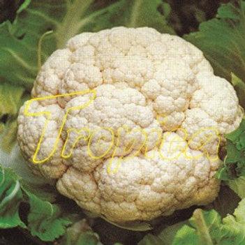 Cauliflower F1 Mont Perle