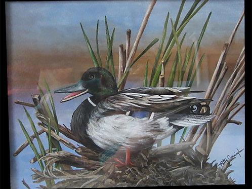 Nesting Mallard by Patty Cunningham                     Acrylic 16 x 19