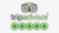 83-836762_tripadvisor-logo.png