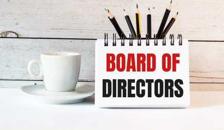 BOARD OF DIRECTORS AND FURTHER UPDATES