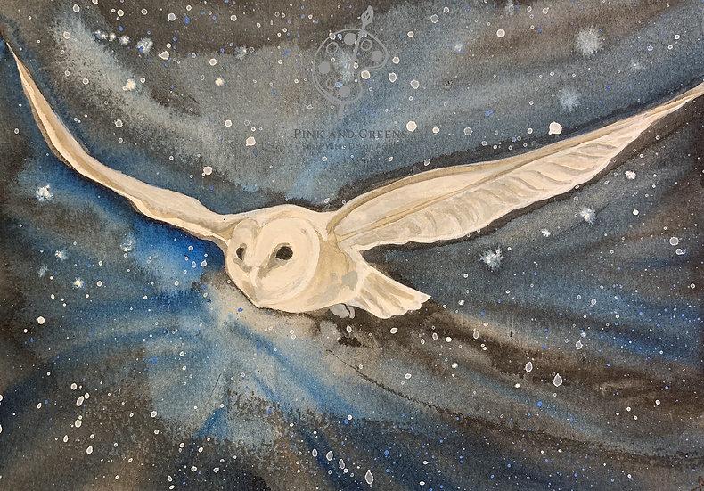 Owl in flight A5 Blank Greetings card