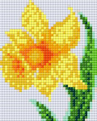28018_Daffodil_2x2P_XL 2.png