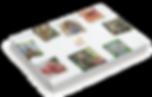 800001_Patronen-catalogus_01_bewerkt.png